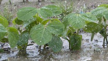 Servicio Meteorológico Nacional alertó por lluvias intensas en la región centro