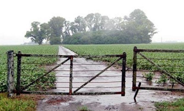Estas condiciones dificultan terminar también con la recolección del maíz sembrado.