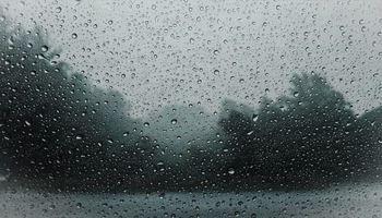 Tiempo para mañana: sobre zonas puntuales, es posible que se observen buenas lluvias desde la noche de hoy