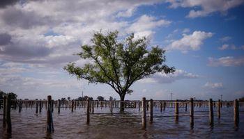 Por las inundaciones habrá un 30% menos de soja en General Villegas