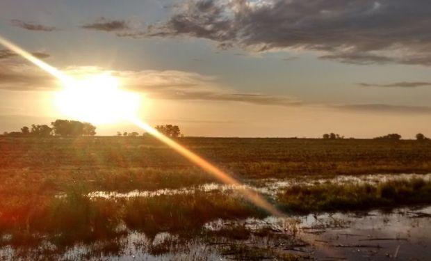 Las lluvias importantes serán para Brasil y en Argentina habrá que dar las gracias por cada milímetro que llegue.