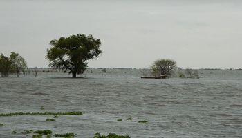 En la Argentina hay 40 millones de hectáreas anegables