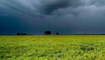 Se esperan lluvias por encima de lo normal para los próximos meses