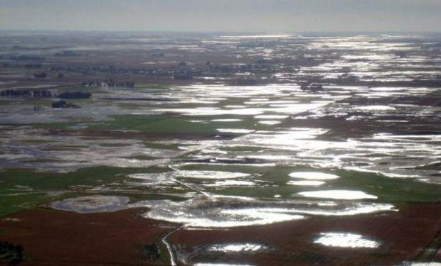 Se redujo la estimación de siembra de soja en 100 mil hectáreas.