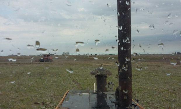 Abril se va con mucha agua: qué dice el pronóstico del tiempo para el campo