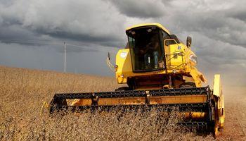 Ahora, la lluvia podría demorar la cosecha en Brasil