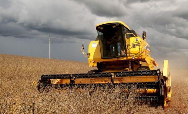 """""""El gran problema, si se puede hablar así, es que estas lluvias están dificultando el pleno desarrollo de la cosecha"""", sostuvo Marco Antonio dos Santos, de Somar."""
