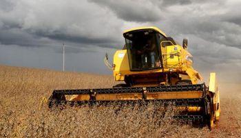 Soja y maíz: lluvias ralentizan la cosecha