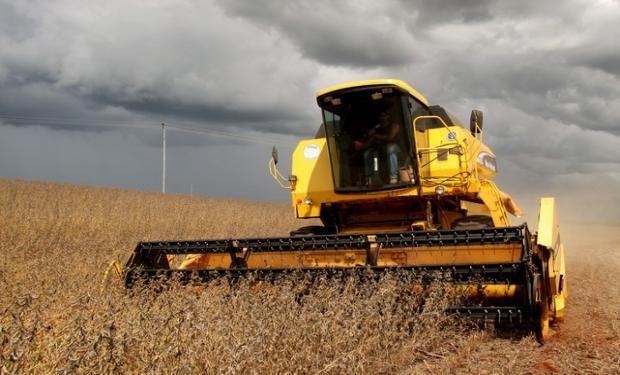 Abundantes lluvias provocaron interrupciones en la recolección de lotes de soja y maíz.