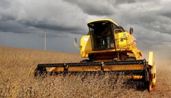 ¿La lluvia obstaculizó la cosecha?