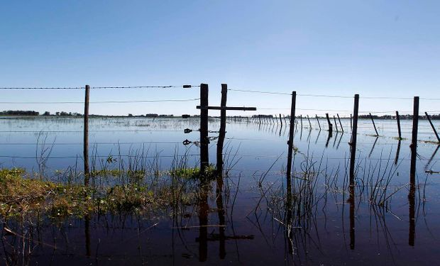Emergencia agropecuaria para Jujuy, Neuquén y La Pampa y ampliación para Mendoza y Corrientes.