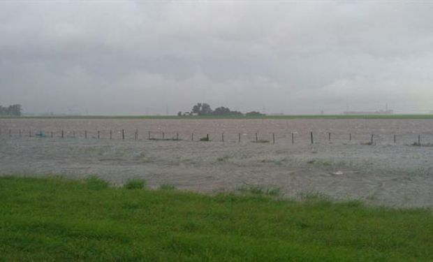En la zona de San Nicolás, en la provincia de Buenos Aires donde llovieron 200 mm, hay campos anegados. Foto: Gentileza Beatriz Juliá.