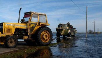 El Salado ahoga: la lucha en el campo para salvar a los animales