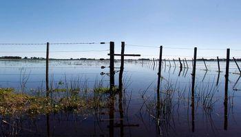 Chaco: condonarán deudas a productores agropecuarios afectados