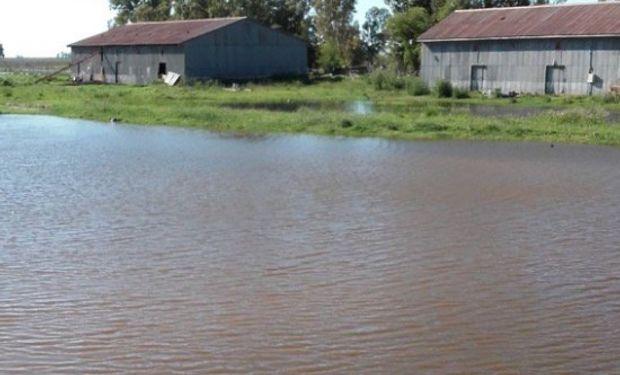 Campos inundados en General Villegas: Foto de twitter de @remigioabadi.