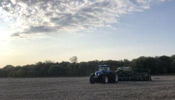 """Lluvias """"cruciales"""" para la campaña gruesa: se apuntala el maíz tras la señal de que el bloqueo seco quedaría atrás"""
