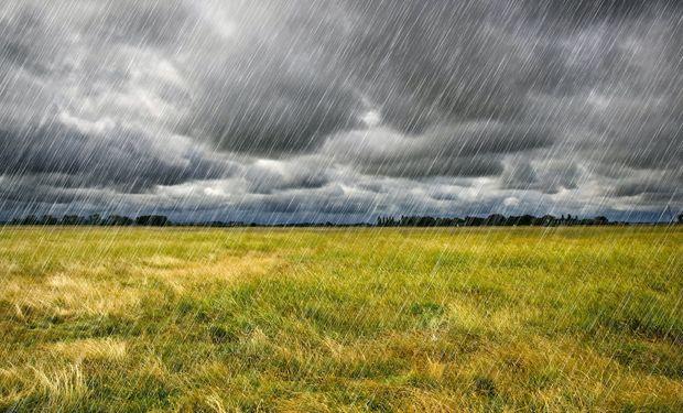 """Lluvias en 8 provincias: """"No alcanzan para revertir la falta pero son cruciales para seguir con las siembras"""""""