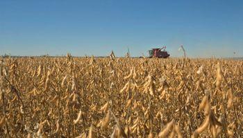 Las últimas lluvias paralizaron la cosecha en Santa Fe