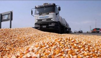 Logística: el pilar de los agronegocios