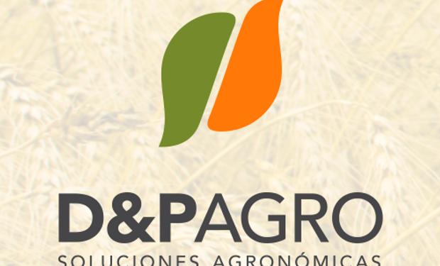 D&P Agro: Desarrollo y Producción agronómica