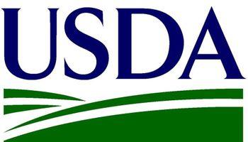 USDA: subas en maíz y bajas para la soja