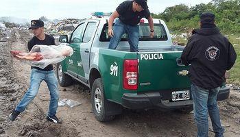 Santa Fe: la inseguridad se cobra 95 cabezas de ganado diarias
