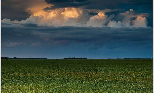 El campo espera con ansias la lluvia