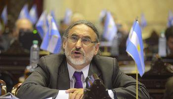 """Basterra en el G20:  """"Estamos viviendo momentos críticos"""""""