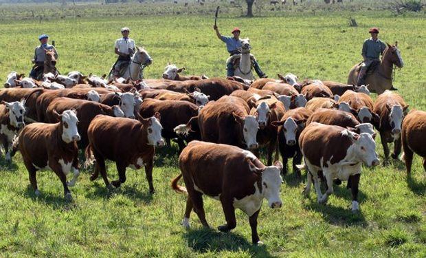 El traslado del trabajado rural y su familia.