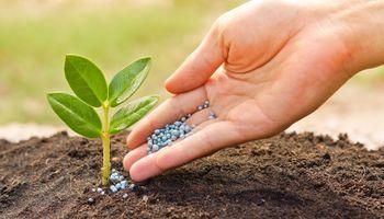 Conferencia para el sector agroindustrial de los fertilizantes de América Latina