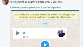 """El audio de un """"emocionado"""" Faurie que Macri hizo viral"""