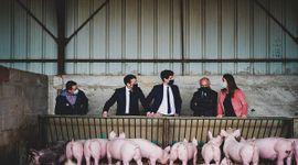"""El presidente de Francia envió un mensaje a productores agropecuarios: """"Gracias por alimentarnos"""""""