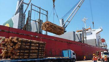 Entre Ríos exportará 38 mil toneladas de madera a China