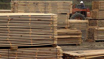 A Córdoba le queda madera para apenas cinco años más
