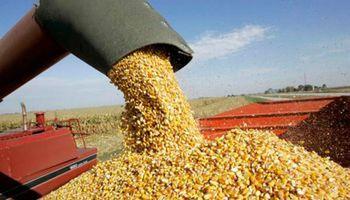 """Urriza: """"Como con el INDEC, el Estado ha recuperado las estimaciones agrícolas"""""""