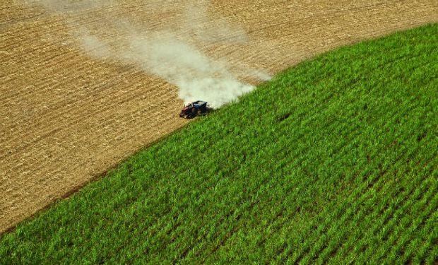 Campaña agrícola entra en su etapa final en EE.UU.