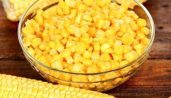 Solicitan la inscripción de dos variedades de maíz dulce