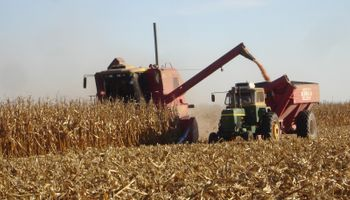 Comenzó la cosecha de maíz 2013/14