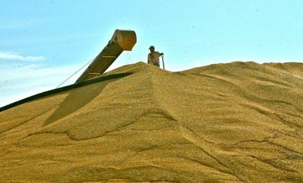 También se está negociando el ingreso del maíz argentino a Colombia.