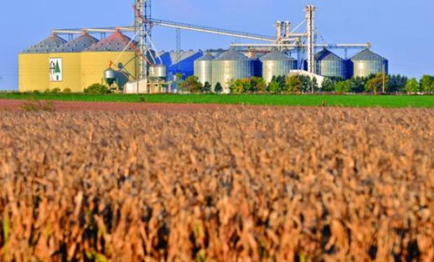"""""""La tecnología"""" juega a favor de los biocombustibles."""
