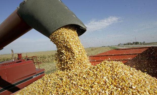 El USDA calculó exportaciones por 19 millones de toneladas.