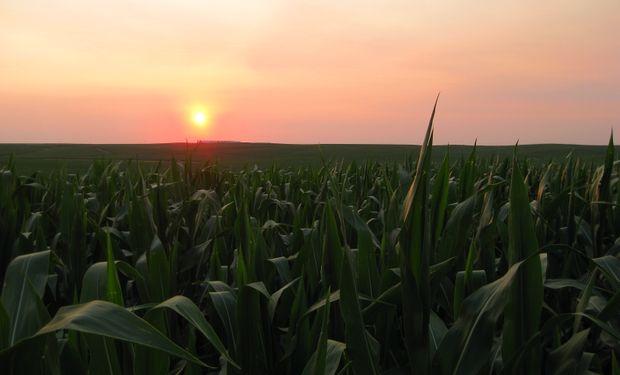 Argentina necesita una nueva revolución agrícola para financiar el déficit energético que llegó para quedarse un buen tiempo más.