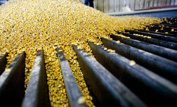 Subas en Rosario: el maíz con descarga trepó hasta los US$ 200 y la soja superó los $25.000