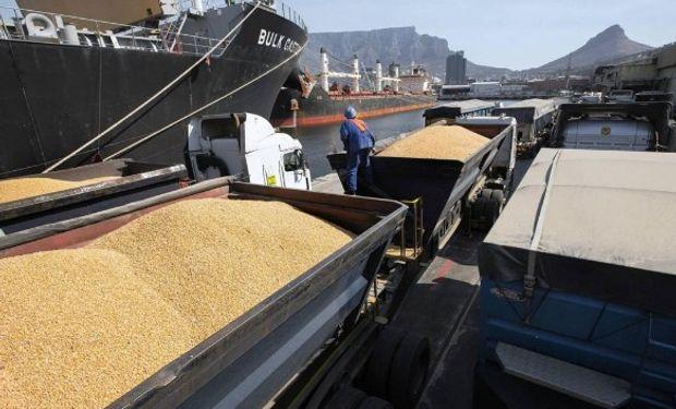 México va en busca de maíz de Sudamérica.