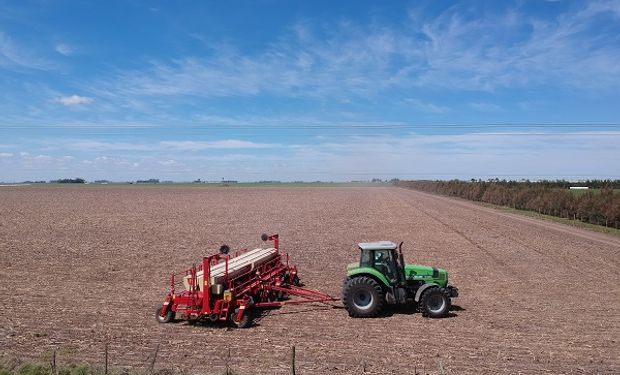 Pese a la incertidumbre, el maíz sigue firme en este 2020: las siembras tardías ganan protagonismo