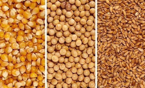 Acompañando las subas externas, mejoró el precio de la soja, el trigo y el maíz en Rosario