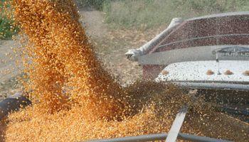 Subió la Unión Europea el arancel al maíz