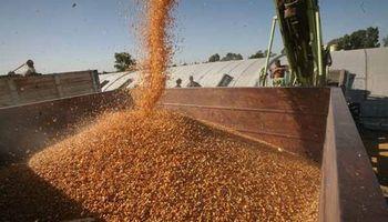 La soja y el maíz fueron los más perjudicados