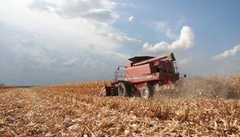 Fuerte caída en la actividad económica con el agro como protagonista