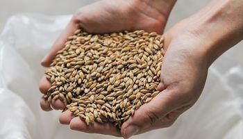 Se suman dos cultivos a la declaración jurada del SISA